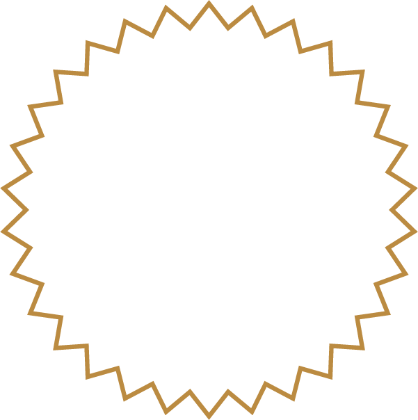 A Night Under the Starts